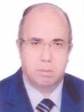 Mohsen Salama Mohamed